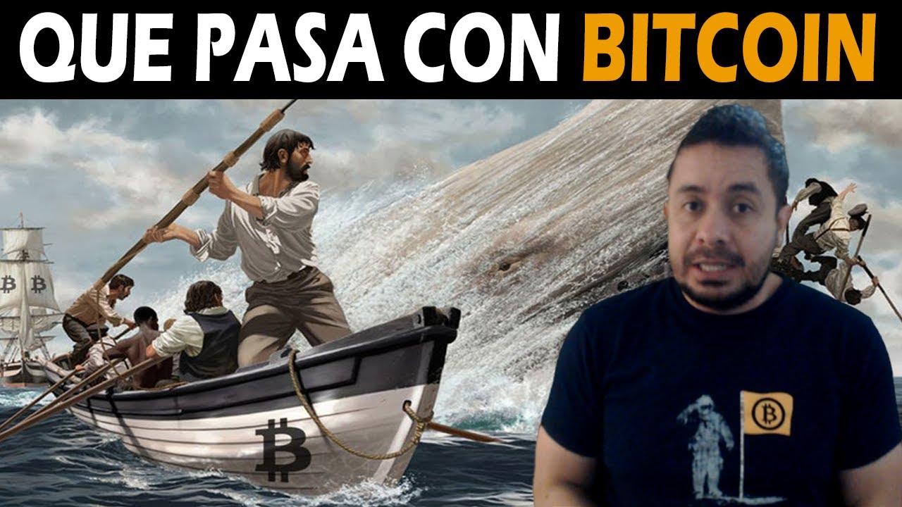 mínimo de inversión de bitcoin meme de papá que invierte bitcoin