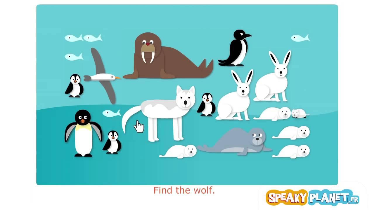 Les animaux de la banquise film d mo du jeu youtube - Dessin banquise ...