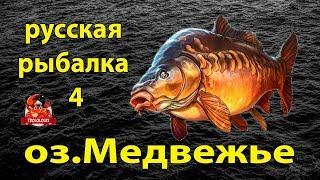 Русская рыбалка 4 озеро Медвежье Карп Где клюет