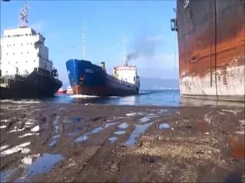 Mv Hera Ex Swallow Shipping Line vessel scrapping