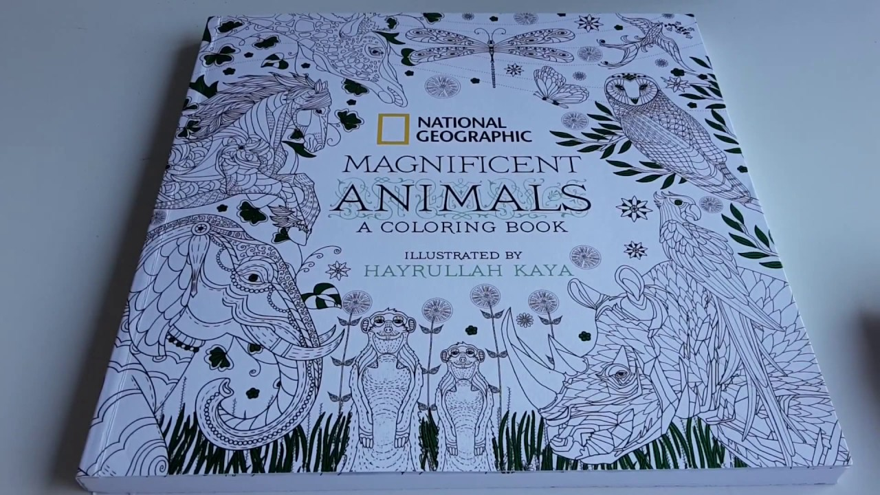 Animal coloring pages national geographic - Review National Geographic S Colouring Book Magnificent Animals