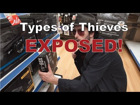 Types of Thieves Exposed!