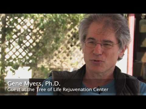 Dr. Cousens' Diabetes Recovery Program - Tree of Life Center US