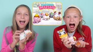 New Smooshy Mushy Squeezable Scented Surprise Squishies! Scented Squishy Blind Bags