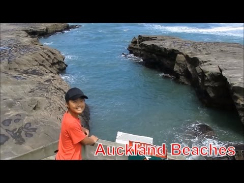 Auckland Travel Guide, Three Popular Beaches In West Auckland