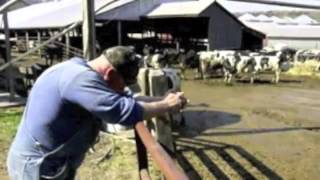 The Decline of Small Family Dairy Farms In Wisconsin Low