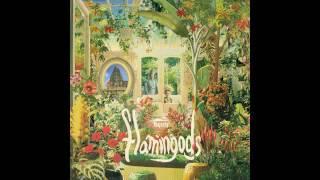 Flamingods - Yuka