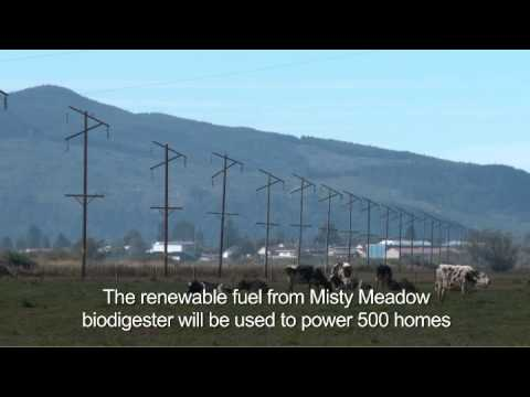 NW Natural Smart Energy Project: Misty Meadow