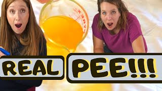 Incontinence Pad Review: Coop Mattress and Sheet Protector Tested With Real Pee!!!