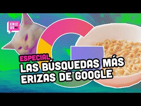 Las búsquedas más raras en Google | Especial | Erizos