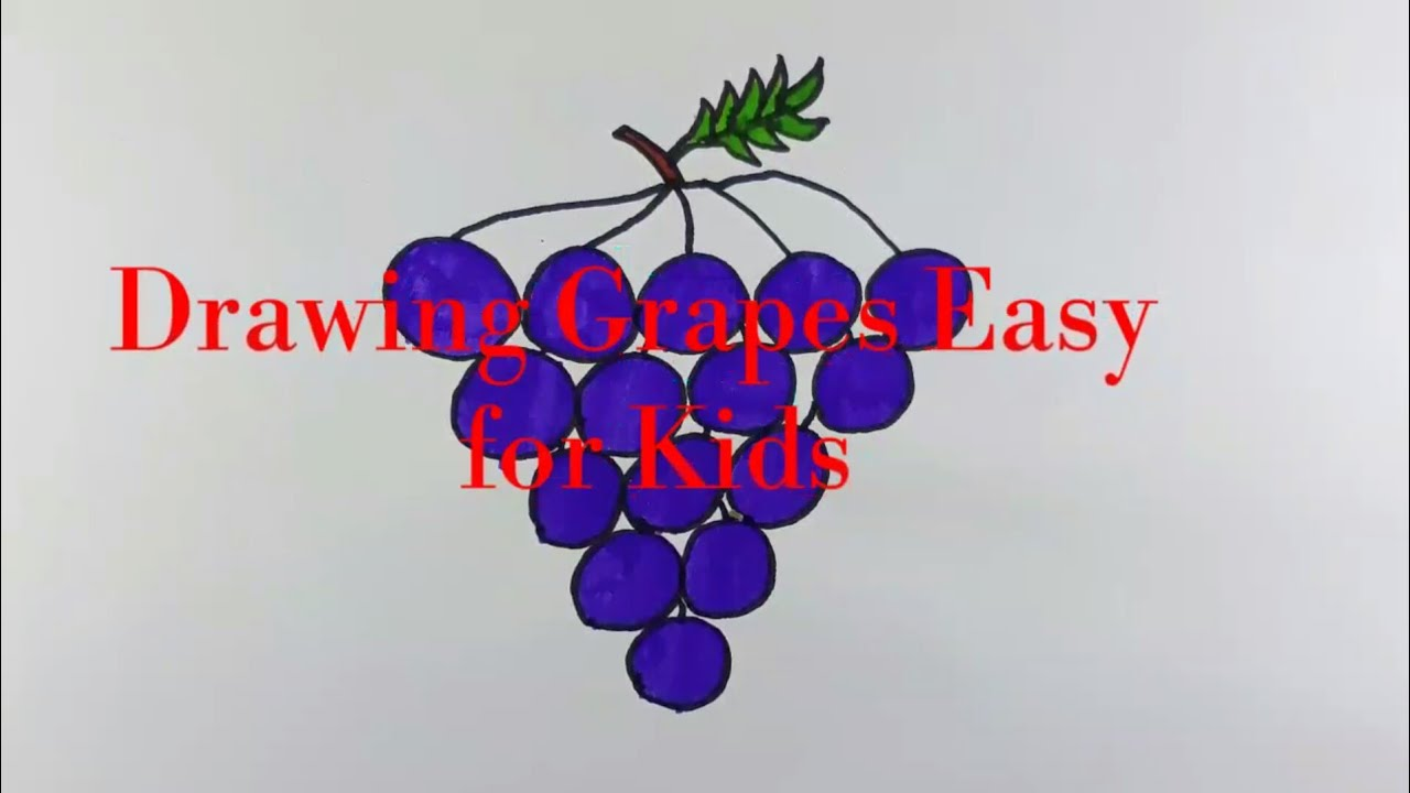 How to Draw and Colour Grapes/ Coloring Page/Easy Draw Step by Step ...