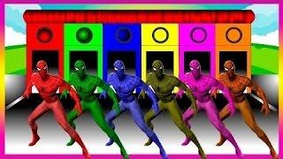 子供たちが色を学ぶスパイダーマン色 - 子供の色