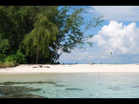 travel to : solomon islands !!!