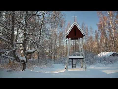 22-Pistepirkko - Snowy Dave