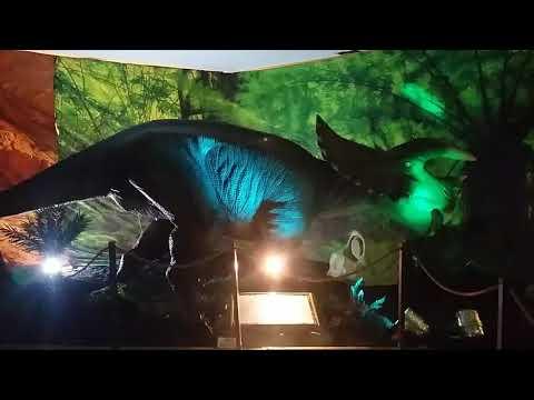 Dinosaur fever in Rustenburg