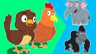 животных звук песни | образовательных видео | узнать животных звук | Animals Sound Song For Kids