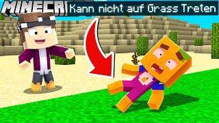 Wir können NICHT auf GRAS TRETEN in Minecraft!