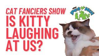 Cat Fanciers Association Cat Show 2015