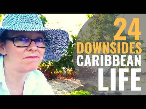 24 DOWNSIDES To Caribbean Living [Living In Puerto Rico Ep 4]