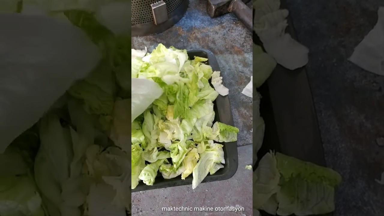 Salata Kurutucu Nasıl Kullanılır