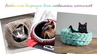 Вязание для любимых котиков.Knitting for your favorite animals