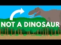 Everything You Know About Dinosaurs Is WRONG