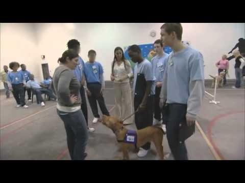 "Safe Humane Chicago's ""Lifetime Bonds"" at IYC Chicago"