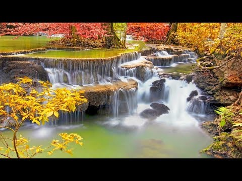 Instrumental Music 24/7: New Love Songs Instrumental Music 2019, Piano Relaxing Music, Stress Relief