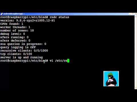 Raspberry Pi DNS Server