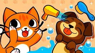 Мой приют для кошек #3 парикмахерская для кошек и собак /  Видео для детей про животных #ПУРУМЧАТА