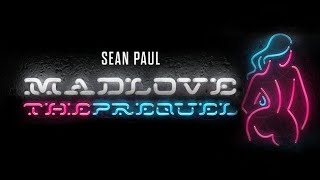 05 Sean Paul Major Lazer Tip Pon It Audio.mp3