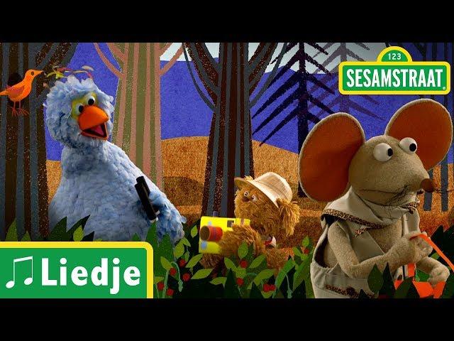 Onder hele hoge bomen - Kinderliedje - Sesamstraat