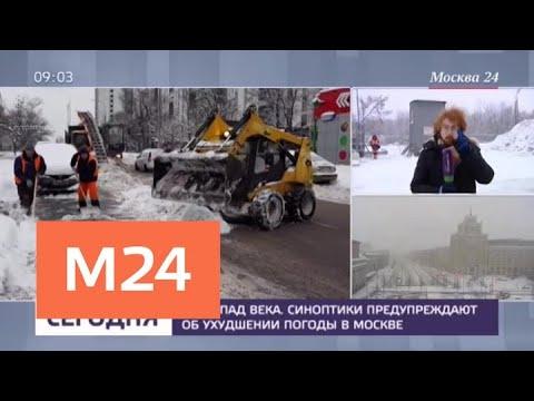 Смотреть Движение на участке голубой ветки метро прервали из-за упавшего дерева - Москва 24 онлайн