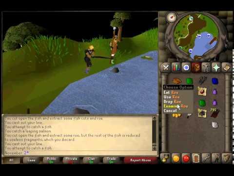 In-depth Barbarian Fishing Guide - 2007HQ
