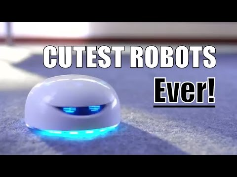 Cute Robots You Can BUY - Robots are Your Ultimate Life Hack