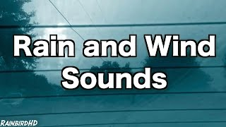 12 Hours Rain and Wind Sounds For Sleeping | Rainfall, Distant Thunder, Wind, Ambience, Sleep Sounds