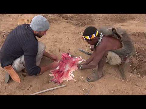 Surviving in the African bush with the Hadza bushmen