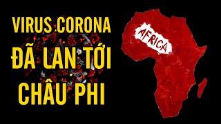 Châu Phi phát hiện ca nhiễm Virus Corona nCoV 2019 đầu tiên