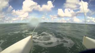 Catamaran waves surfing in Dominican Republic