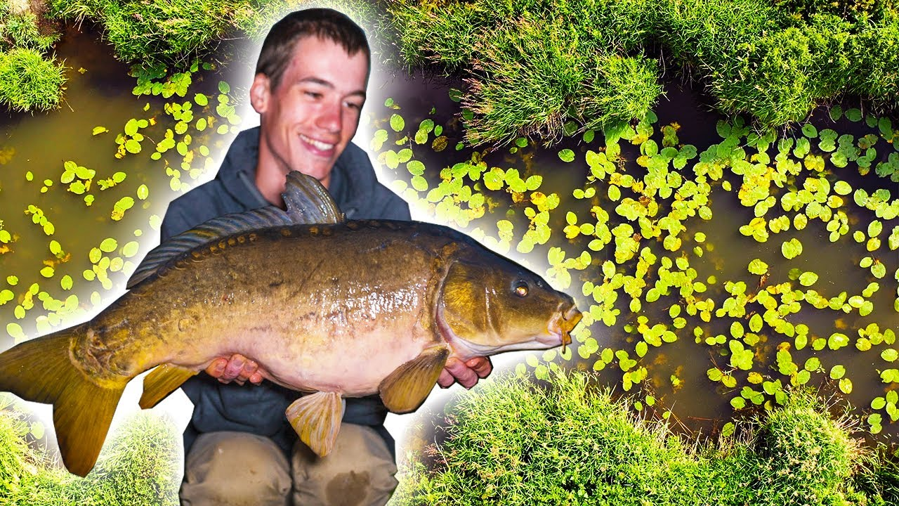 Carp Fishing on the River - an EPIC start to our fishing season!