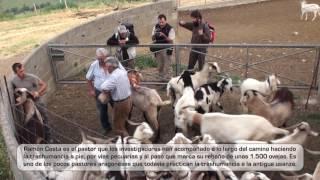 Making of documentales TVE sobre el proyecto MEDELCA. Rutas pecuarias neolíticas en el Pirineo