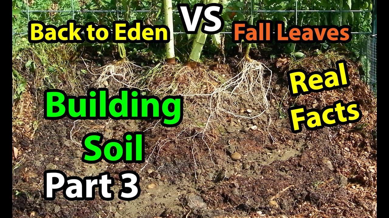 soil hints the gardening october raking mowing into than horticultural lawn to leaves garden adds nutrients rather
