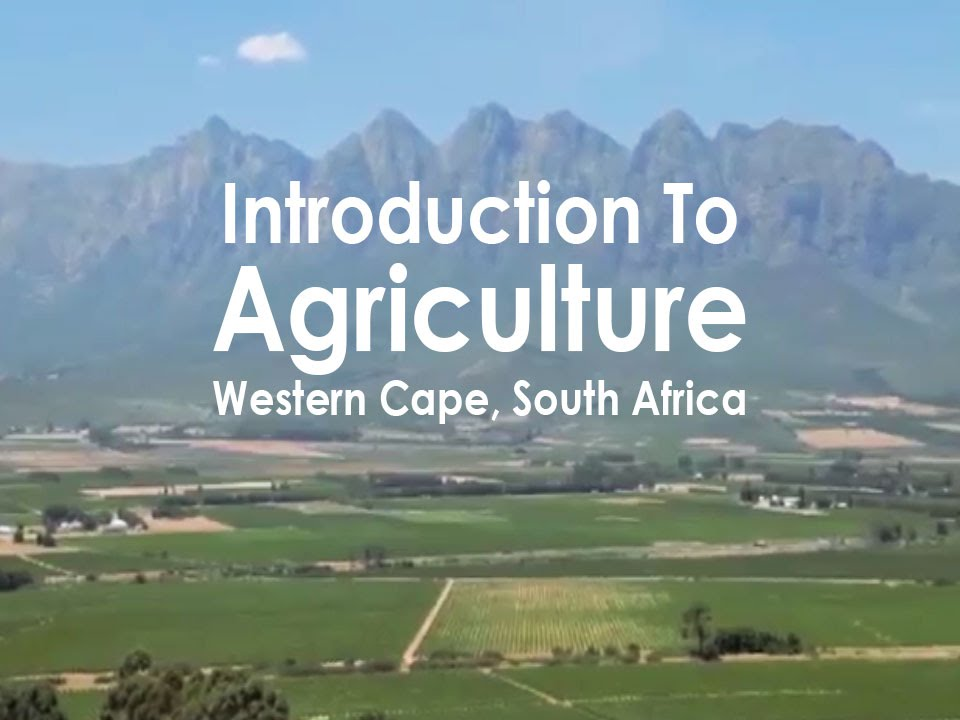 Introduction To Agriculture Western Cape, South Africa