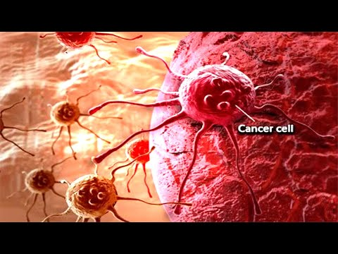 Hidden From The Public Top Causes Of Cancer That We Use Daily!!