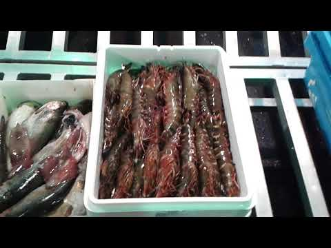 Fish Market Birmingham