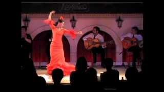 Junko Hagiwara ¨LA YUNKO¨. ALEGRIAS CON BATA DE COLA. Octubre 2012