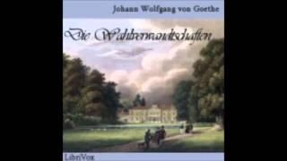 Die Wahlverwandtschaften - Johann Wolfgang von Goethe ( Hörbuch )