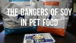 The Dangers of Soy In Pet Food