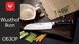 Обзор кухонных ножей Wusthof Ikon