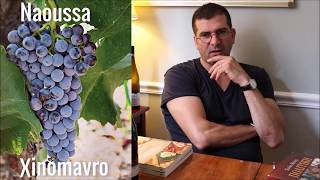 Greek Wines- Sotiris Bafitis on Xinomavro Greek Grape